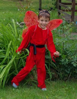 Inchiriere costum serbare fluture rosu baiat 1207