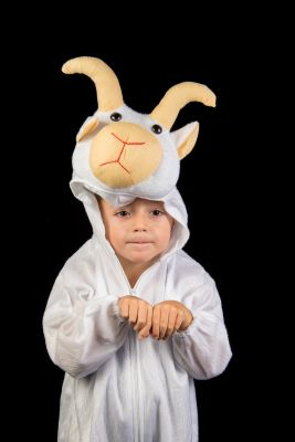 Costum serbare copii ied 1513