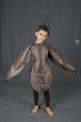 Costum serbare, gandac, carabus, furnica baieti 940