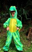 Inchiriere Costum dragon, dinozaur copii 594
