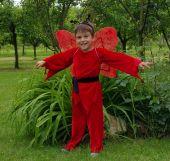 Costum serbare fluture rosu baiat 1207
