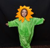 Costum baiat Floare galbena, floarea soarelui 134