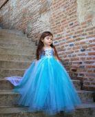 Rochita Elsa 906