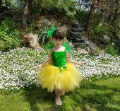 Inchiriere costum fetite Floare Papadie 141