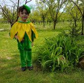Costum serbare floarea soarelui 642