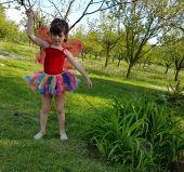 Inchiriere costum pentru serbari fetite Fluturas 496